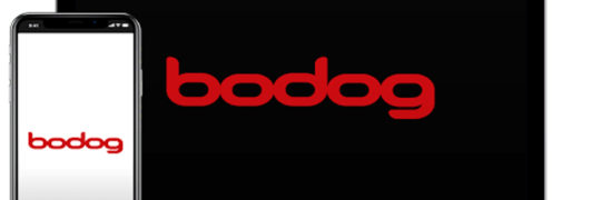About Bodog Betting